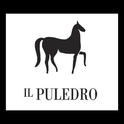 PULEDRO-LOGO